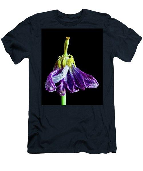 Dancing Tulip Men's T-Shirt (Athletic Fit)