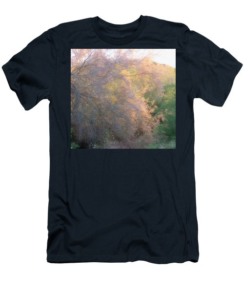 Desert Ironwood Blooming In The Golden Hour Men's T-Shirt (Athletic Fit)