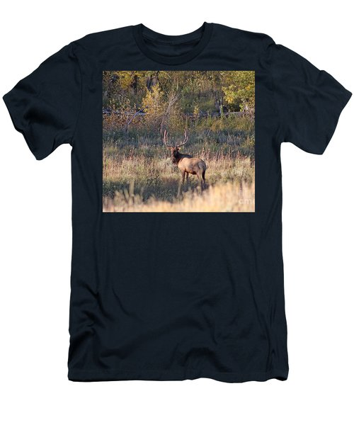 Fall Sunset Satellite Bull Elk Men's T-Shirt (Athletic Fit)