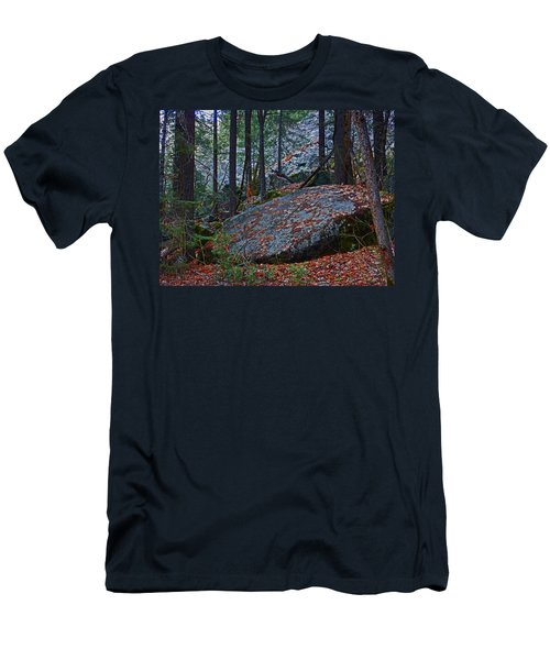 Men's T-Shirt (Athletic Fit) featuring the photograph Forest Trail 01 2015 by Walter Fahmy