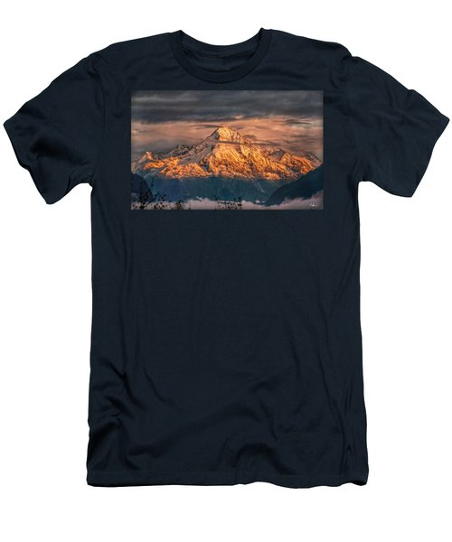 Golden Evening Sun Men's T-Shirt (Slim Fit) by Hanny Heim