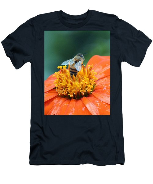 Honeybee On Orange Flower Men's T-Shirt (Athletic Fit)
