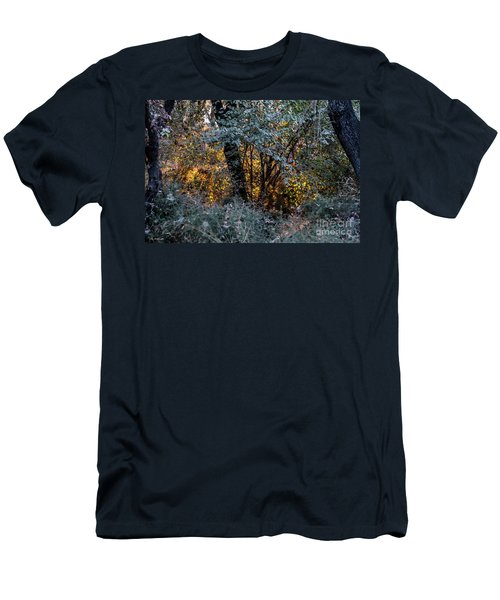 Hot Sunset In The Forest Men's T-Shirt (Athletic Fit)