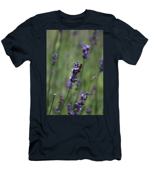 Lavender And Honey Bee Men's T-Shirt (Athletic Fit)