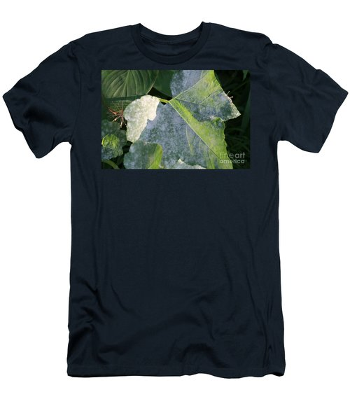 Calming Leafy Glade Men's T-Shirt (Athletic Fit)