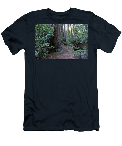 Magical Path Through The Redwoods On Mount Tamalpais Men's T-Shirt (Athletic Fit)