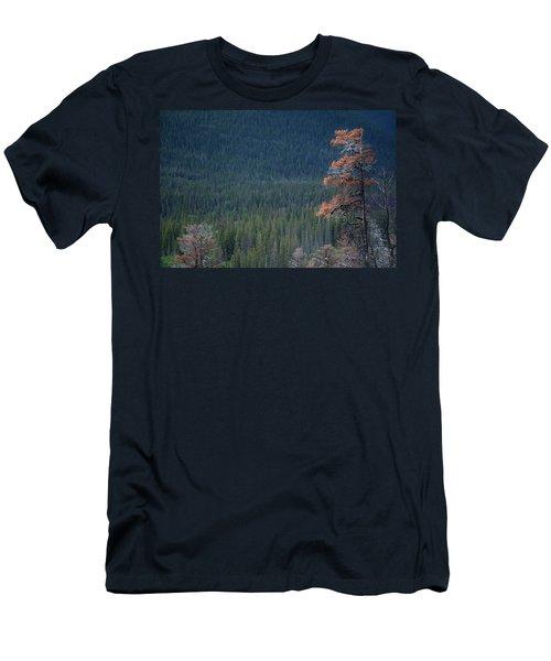 Montana Tree Line Men's T-Shirt (Athletic Fit)