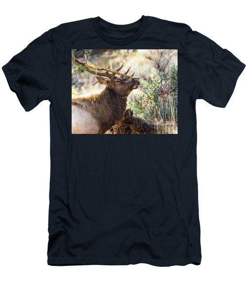 Ready For Rut Men's T-Shirt (Slim Fit) by Yeates Photography