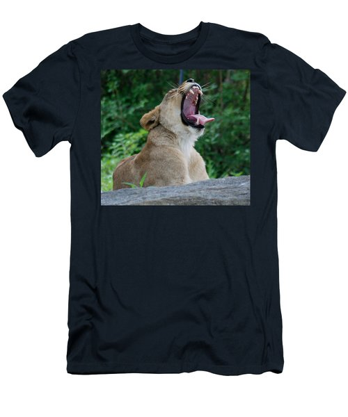 Men's T-Shirt (Slim Fit) featuring the photograph Sleepy Lion by Richard Bryce and Family