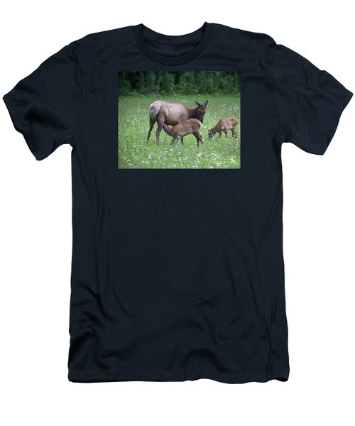 Smoky Mountain National Park Elk Cow Nursing Calf Men's T-Shirt (Athletic Fit)