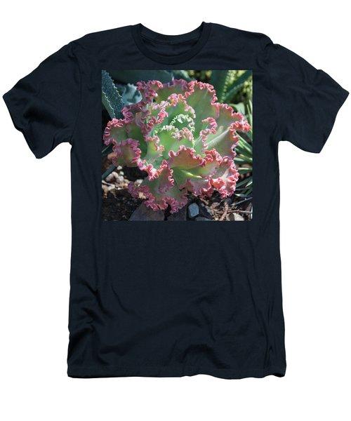 Succulent Series II Men's T-Shirt (Athletic Fit)