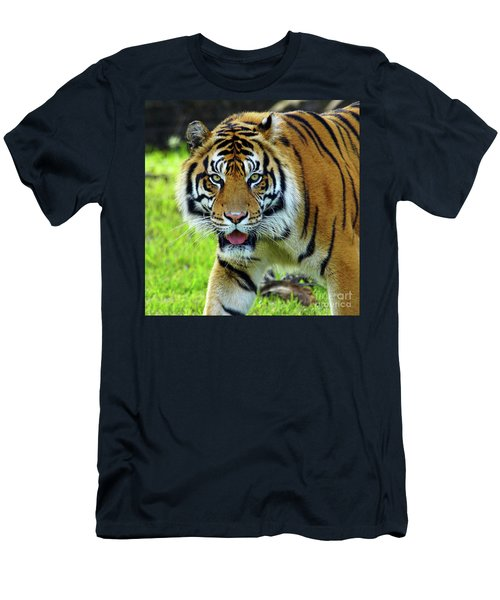Tiger The Stare Men's T-Shirt (Slim Fit) by Larry Nieland