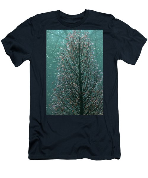 Tree In Autumn, With Red Leaves, Blue Background, Sunny Day Men's T-Shirt (Slim Fit)