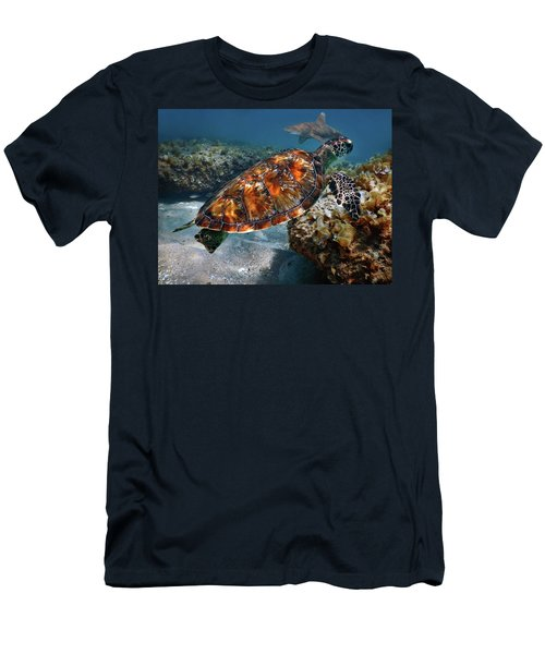 Turtle And Shark Swimming At Ocean Reef Park On Singer Island Florida Men's T-Shirt (Athletic Fit)