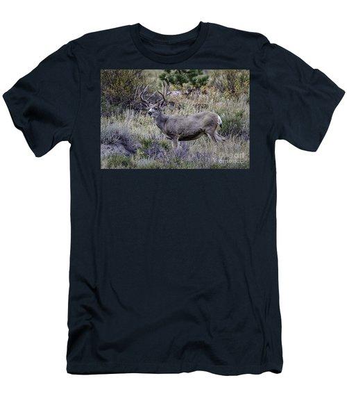 Velvet Mule  Men's T-Shirt (Athletic Fit)