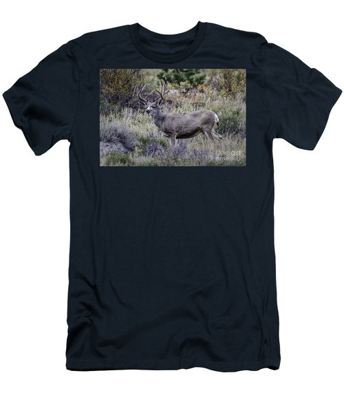 Velvet Mule  Men's T-Shirt (Athletic Fit)