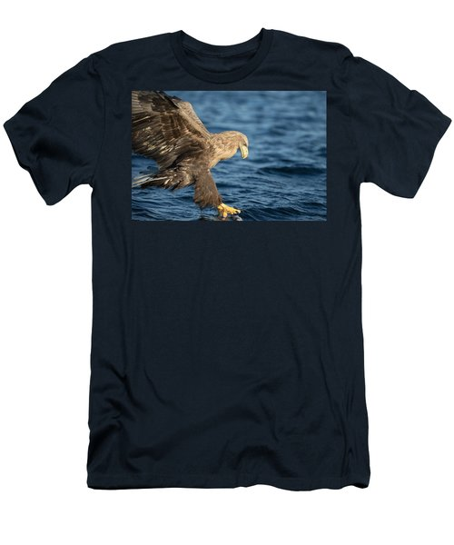 White-tailed Eagle Hunting Men's T-Shirt (Athletic Fit)