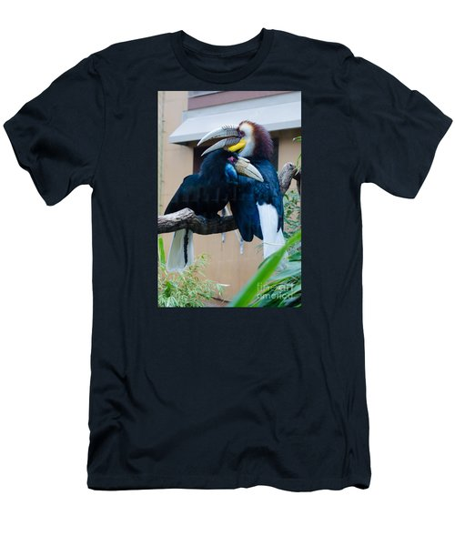 Wreathed Hornbills Men's T-Shirt (Athletic Fit)