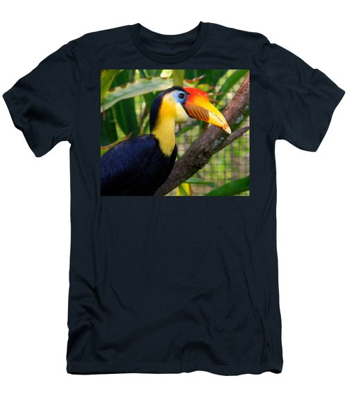 Wrinkled Hornbill Men's T-Shirt (Athletic Fit)