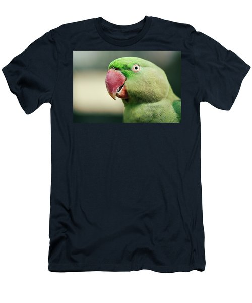 Close Up Of A King Parrot Men's T-Shirt (Athletic Fit)