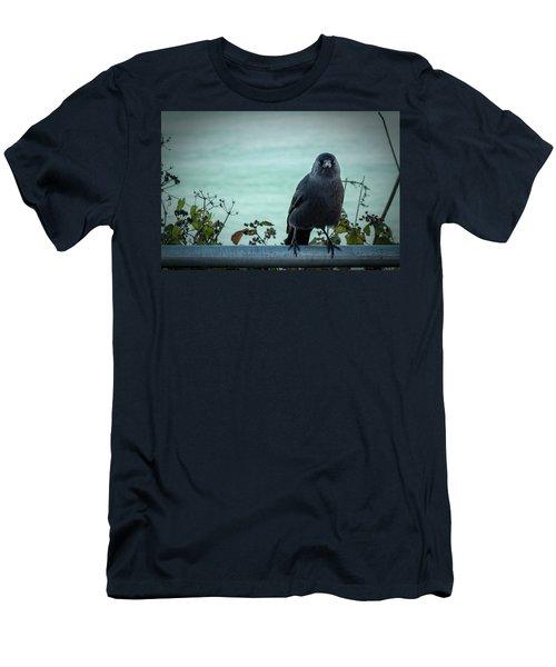 Cornish Crow Men's T-Shirt (Athletic Fit)
