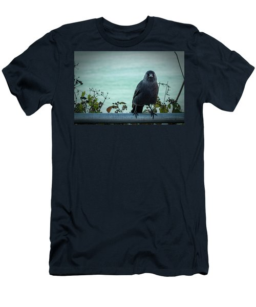 Cornish Crow Men's T-Shirt (Athletic Fit)