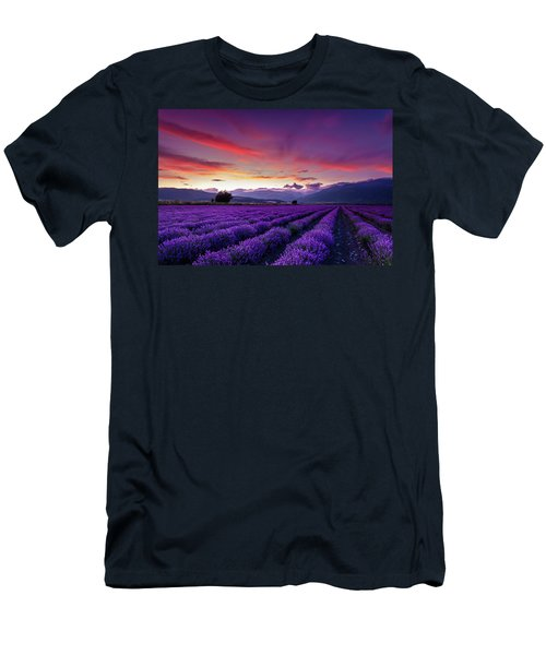 Lavender Season Men's T-Shirt (Athletic Fit)