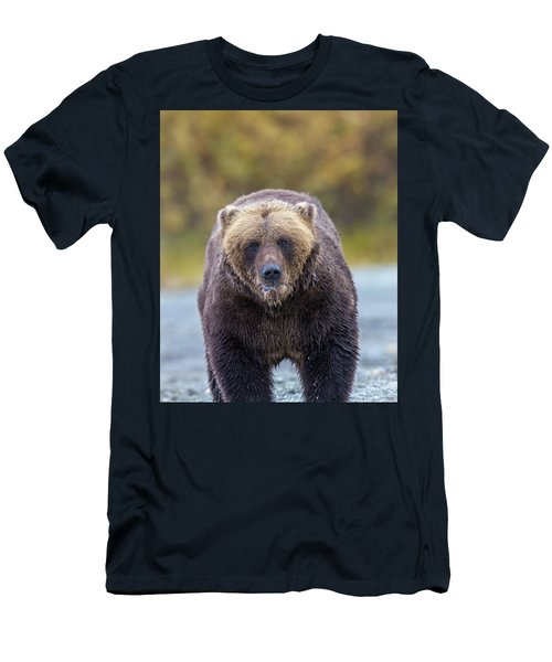 Lazy C Angry Bear  Men's T-Shirt (Athletic Fit)
