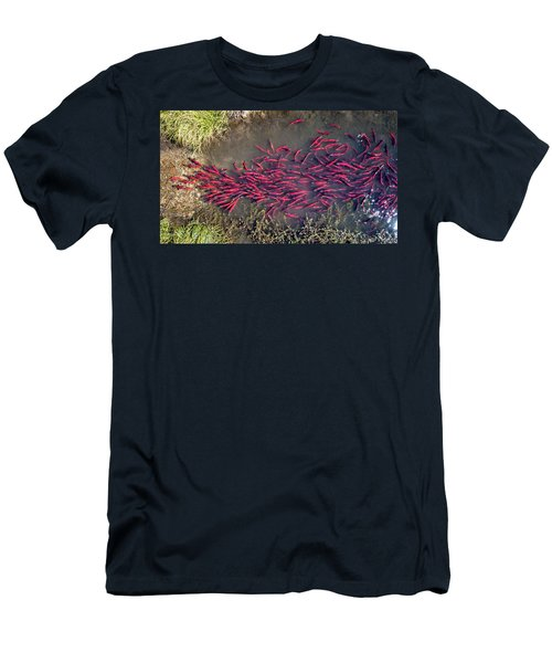 Men's T-Shirt (Athletic Fit) featuring the photograph Spawning Kokanee Salmon by Wesley Aston