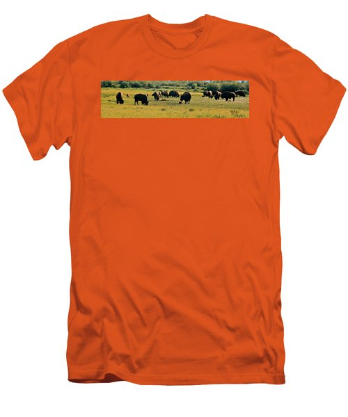 A New Beginning Grand Teton National Park Men's T-Shirt (Athletic Fit)