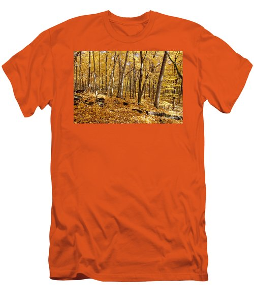 Arboretum Trail Men's T-Shirt (Athletic Fit)