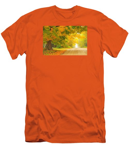 Autumn Cascade Men's T-Shirt (Slim Fit) by Terri Gostola
