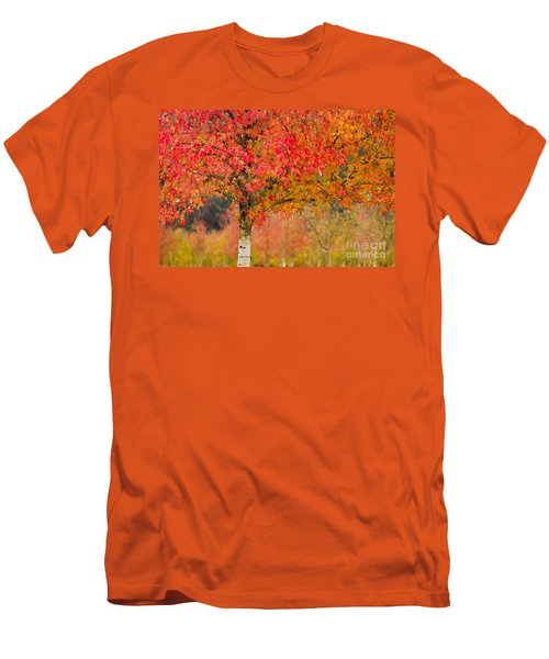 Autumn Fire Men's T-Shirt (Slim Fit) by Sonya Lang