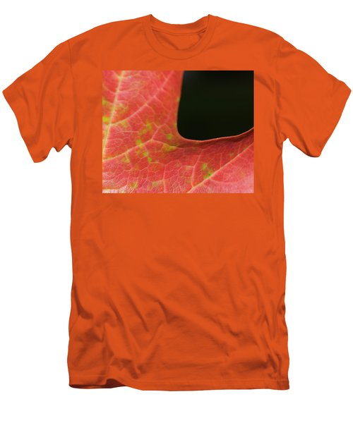 Autumn  Men's T-Shirt (Slim Fit) by Tara Lynn