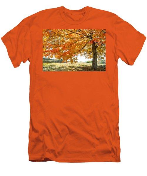 Autumn Tree - 2 Men's T-Shirt (Athletic Fit)