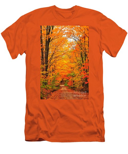 Autumn Tunnel Of Trees Men's T-Shirt (Slim Fit) by Terri Gostola