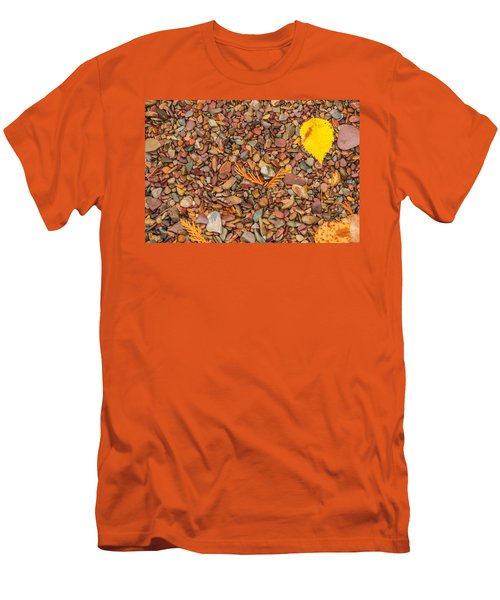 Beach Pebbles Of Montana Men's T-Shirt (Athletic Fit)