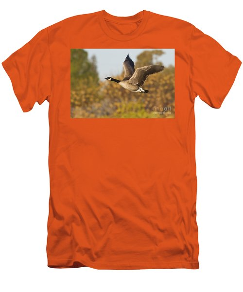 Canada Goose In The Skies  Men's T-Shirt (Athletic Fit)