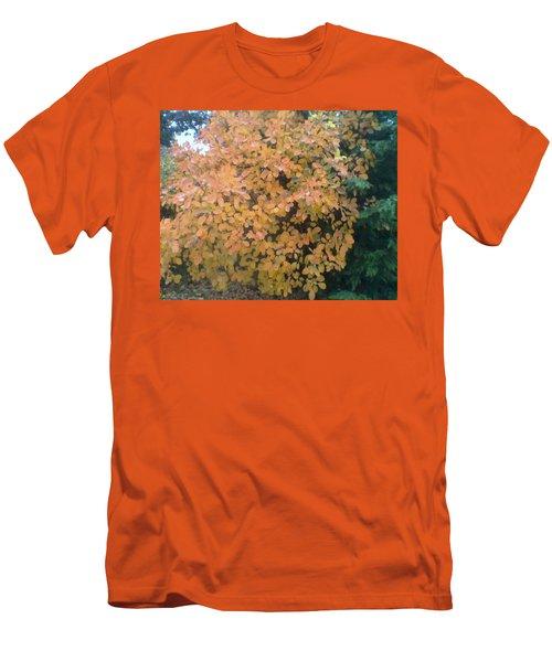 Color Surprise Men's T-Shirt (Slim Fit) by David Trotter