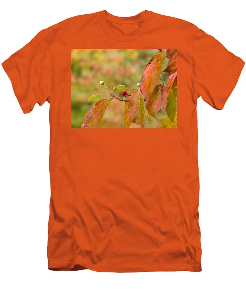 Men's T-Shirt (Slim Fit) featuring the photograph Dogwood Berrie by Nick Kirby