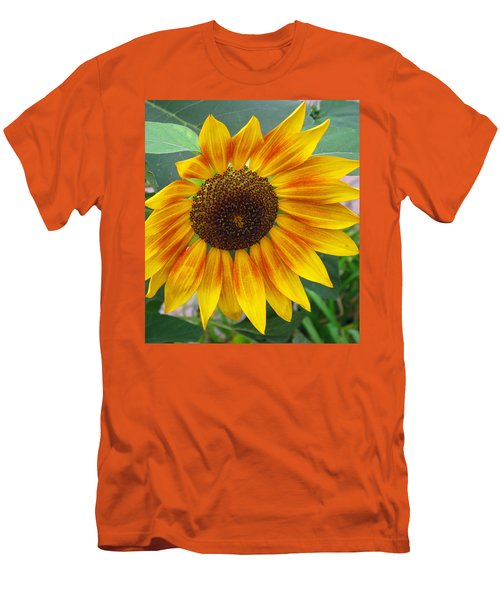 Men's T-Shirt (Slim Fit) featuring the photograph End Of Summer Sunflower by Barbara McDevitt