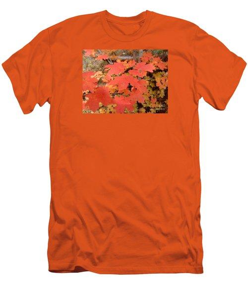 Fall Colors 6308 Men's T-Shirt (Slim Fit) by En-Chuen Soo