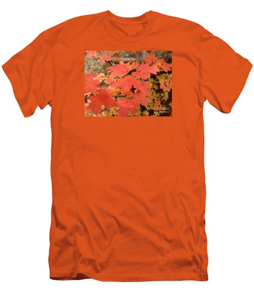 Fall Colors 6308 Men's T-Shirt (Athletic Fit)
