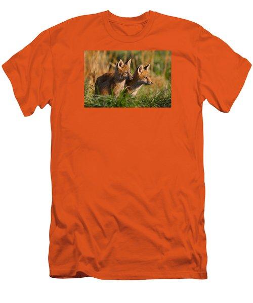 Fox Cubs At Sunrise Men's T-Shirt (Athletic Fit)