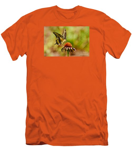 Giant Swallowtail Butterfly Men's T-Shirt (Slim Fit) by Kathy Baccari
