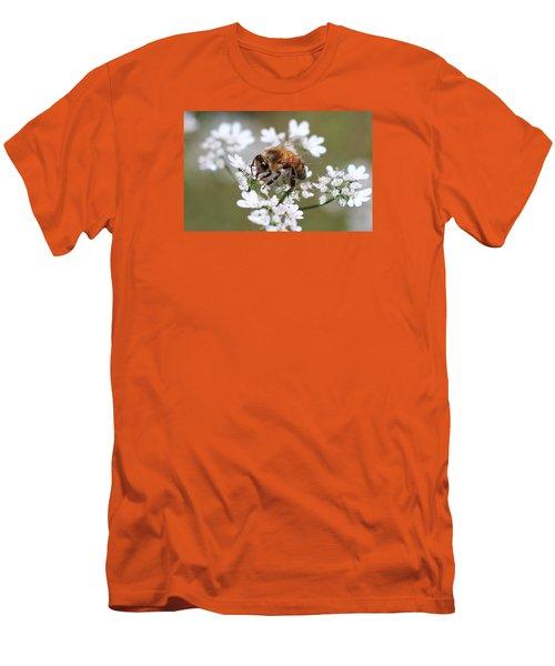 Honeybee On Cilantro Men's T-Shirt (Slim Fit) by Lucinda VanVleck