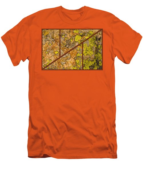 Iron And Lichen Men's T-Shirt (Athletic Fit)