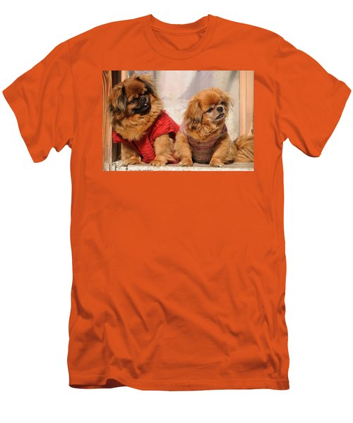 Pekingese Pair Men's T-Shirt (Athletic Fit)