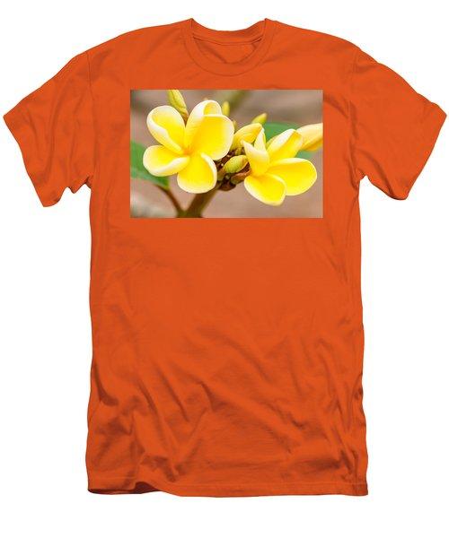Plumerias Of Paradise 14 Men's T-Shirt (Athletic Fit)