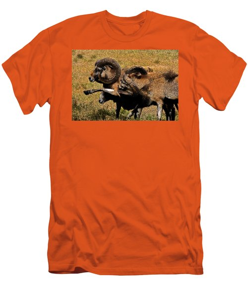 Men's T-Shirt (Slim Fit) featuring the photograph Rams At Half-time by Doc Braham